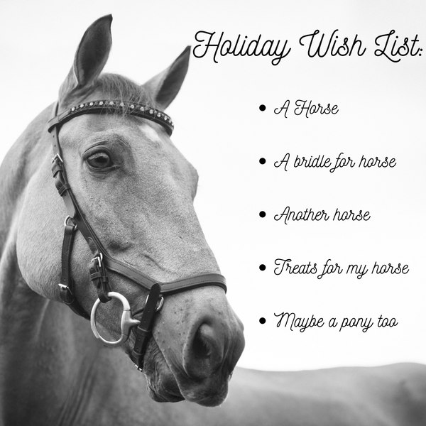 Horse Holiday Wish List