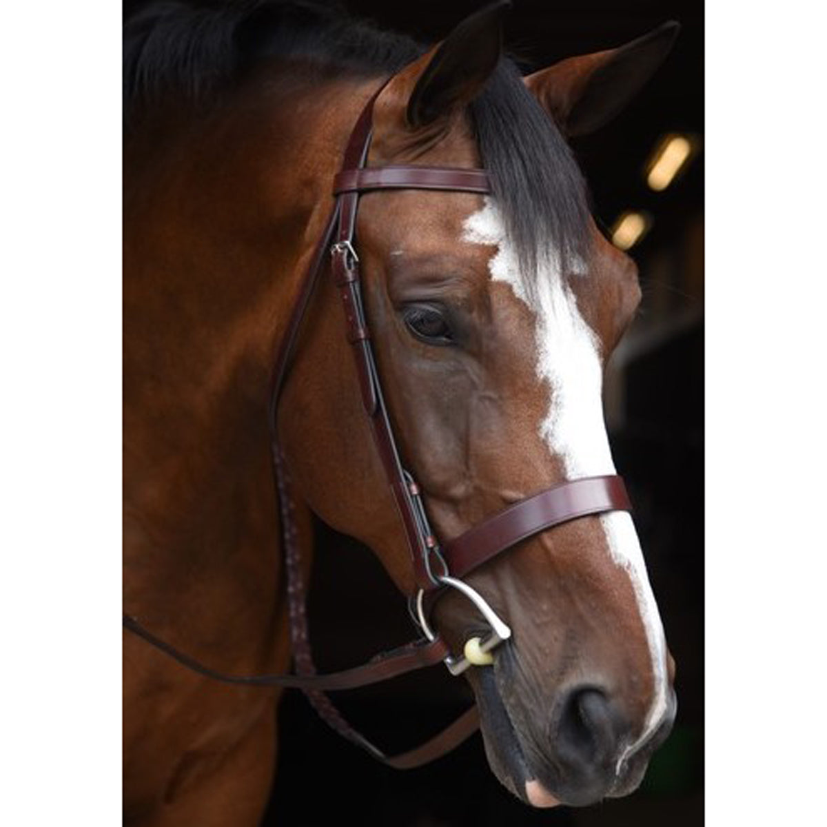 KL Select Italia Foxwell Hunt Bridle
