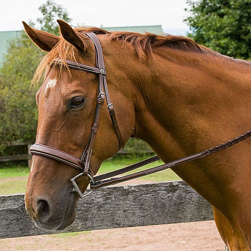 HDR Pro Mono Crown Bridle with Padded Wide Noseband with Laced Reins