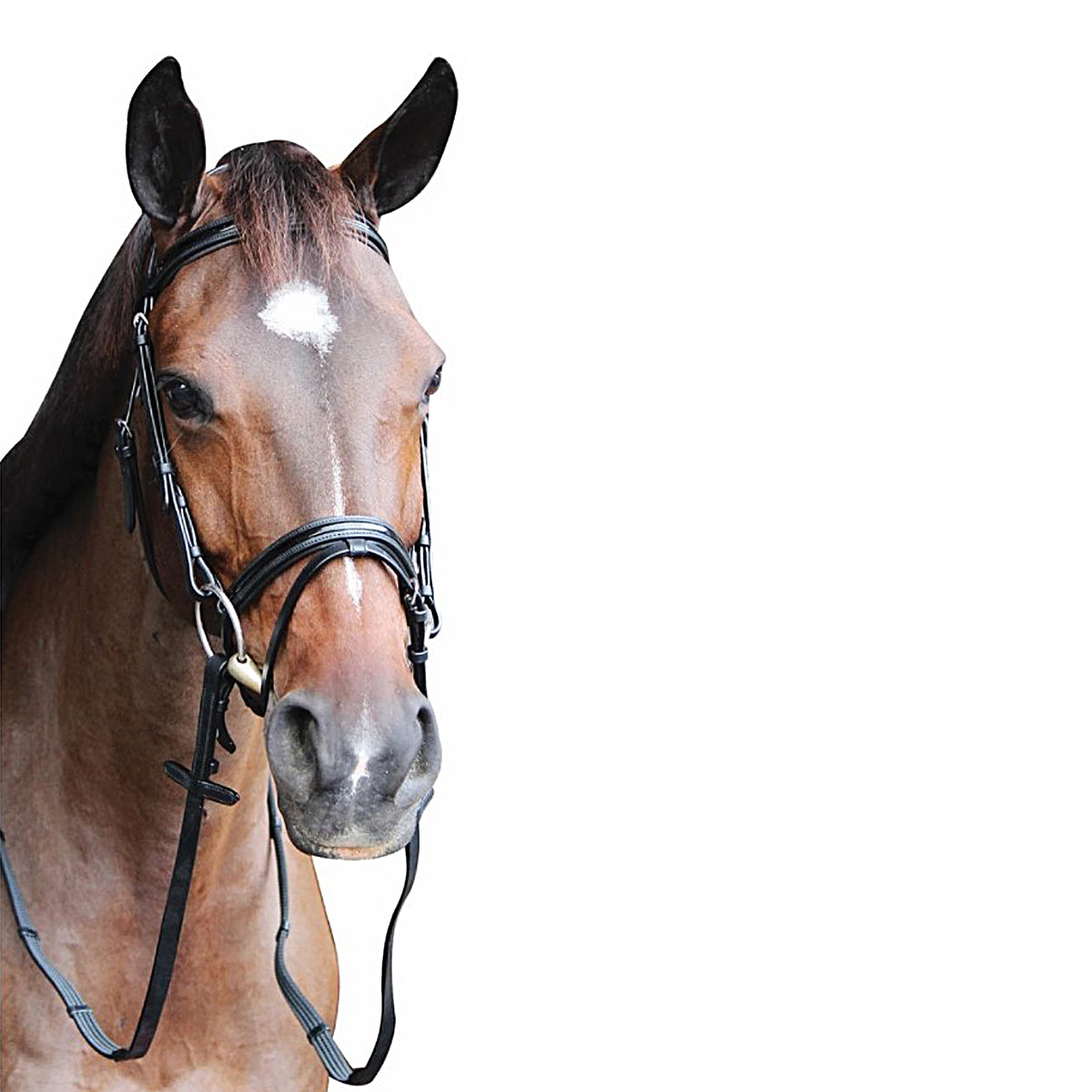 HDR Pro Piaffe Mono Crown Bridle and Flash Noseband with Patent Leather and Webbed Rubber Reins