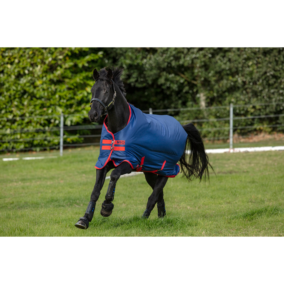 Horseware Mio Turnout 200g Medium