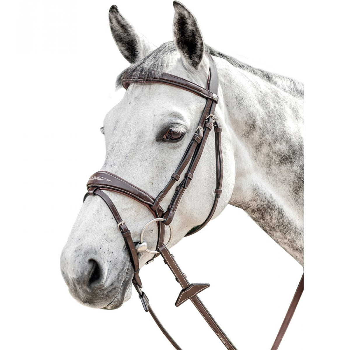 Prestige Flash Bridle