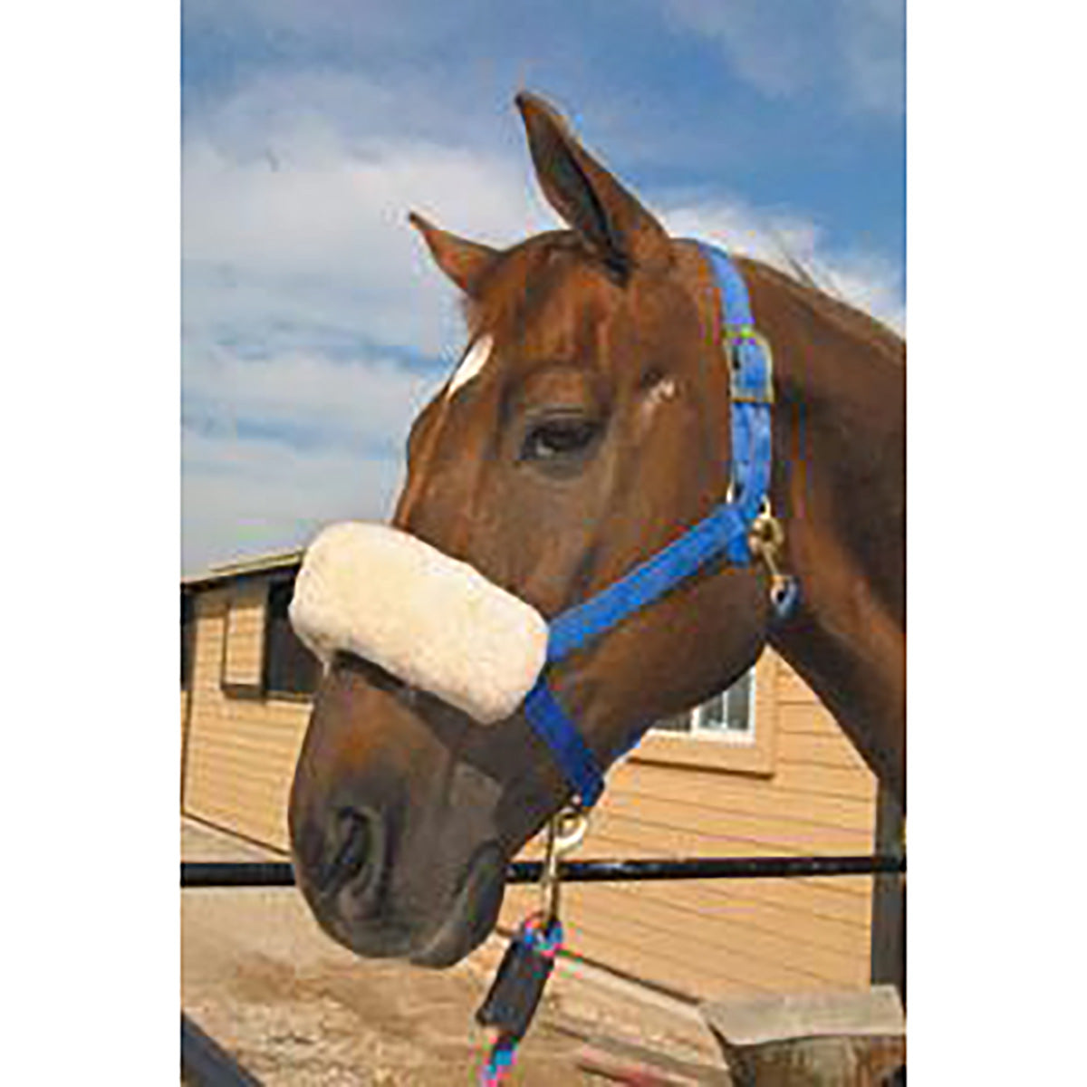 ECP Halter Fleece Noseband Cover