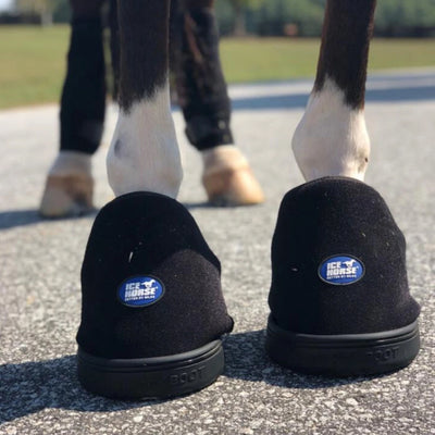 Ice Horse Hoof Ice Boot