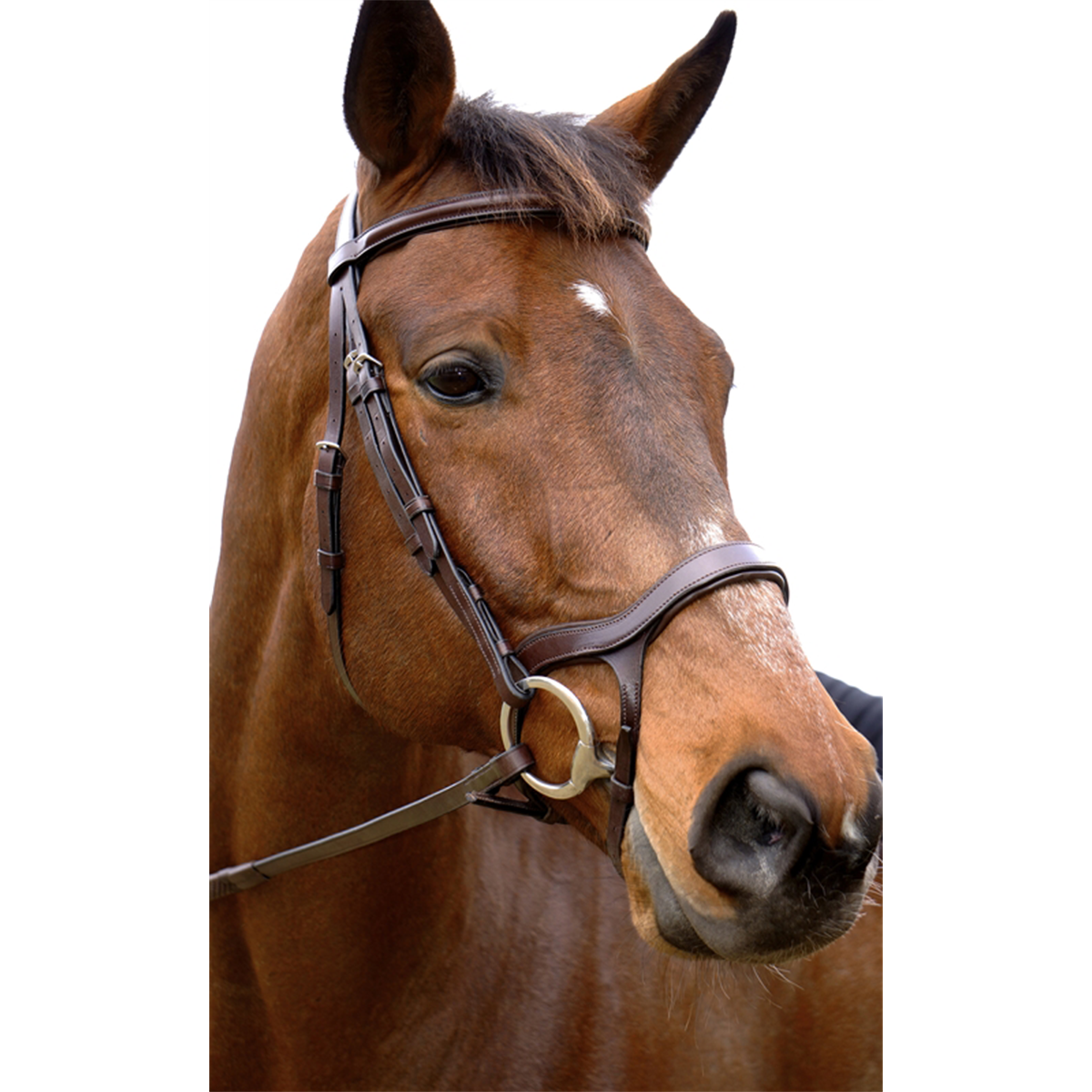 Nunn Finer Innovativo Shaped Bridle