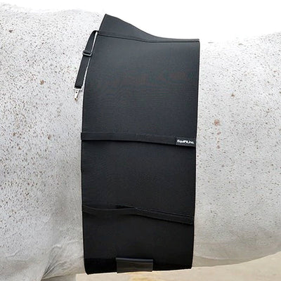 Equifit BellyBand
