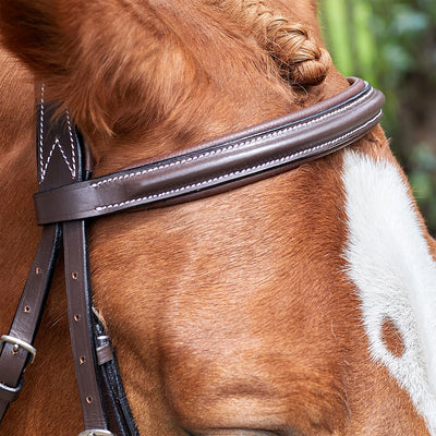 HDR Pro Raised Figure 8 Mono Crown Bridle