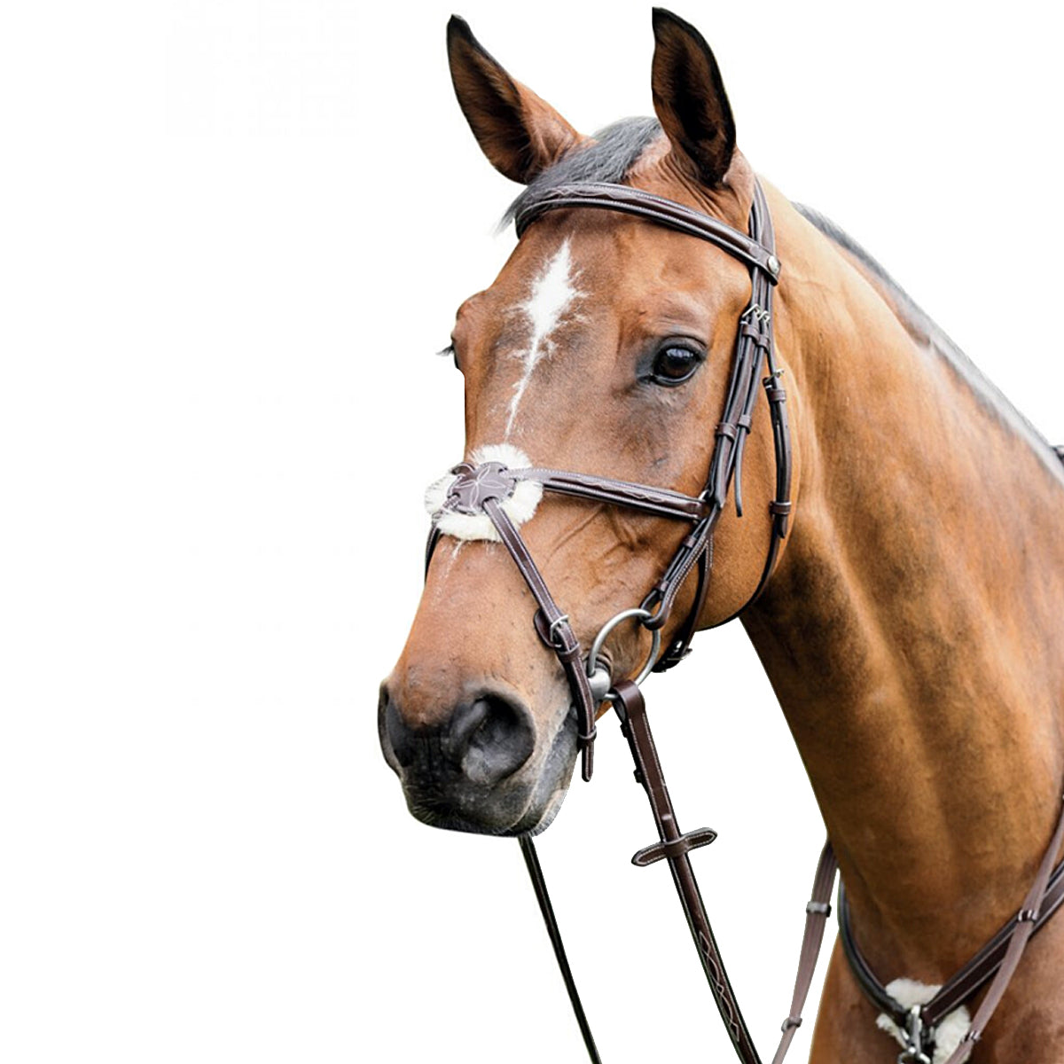 Prestige Leather Bridle with Mexican Noseband
