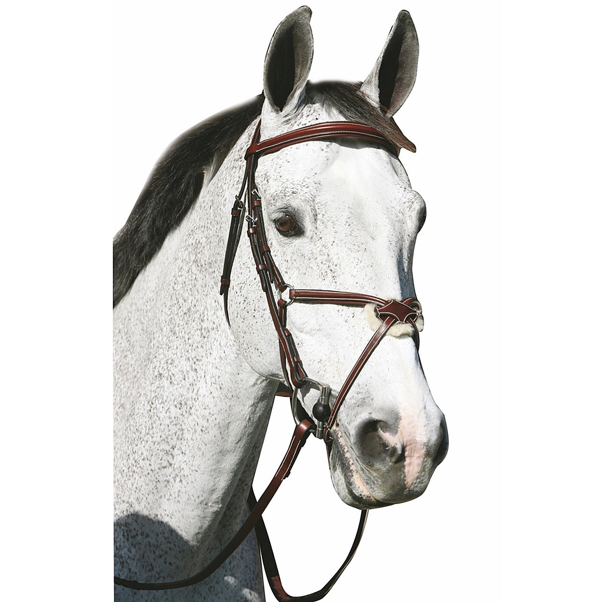 HDR Pro Mono Crown Raised Figure Eight Bridle with Rubber Reins