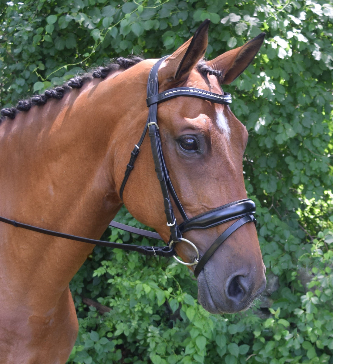 KL Select Red Barn Topline Dressage Bridle