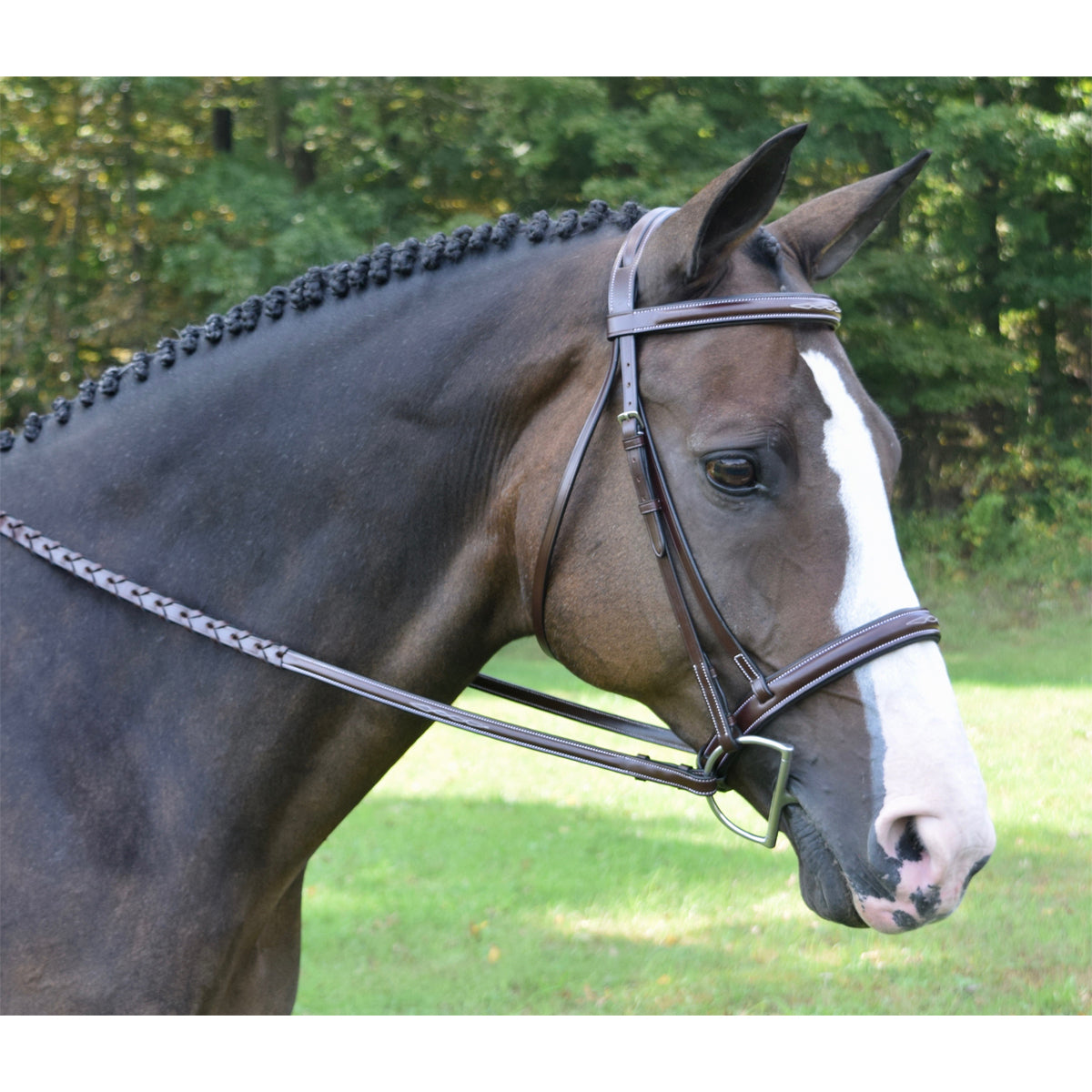 KL Select Red Barn Spirit Hunter Bridle