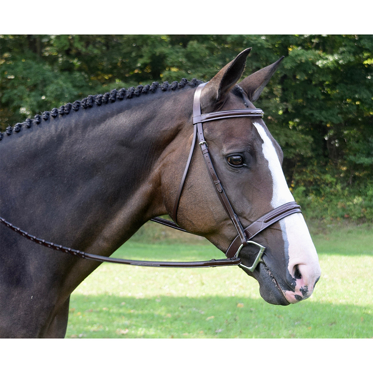 Red Barn by KL Select Sonoma Hunter Bridle