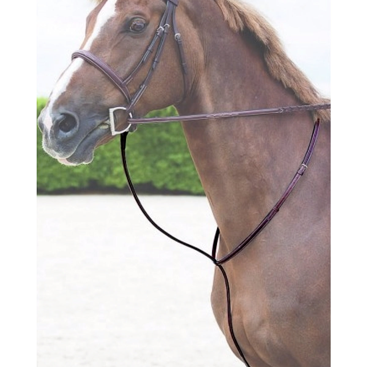 Dy'on Raised Standing Martingale