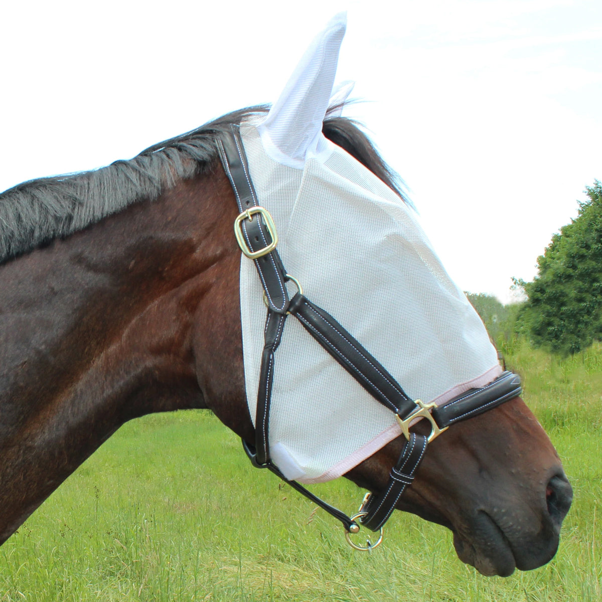 Tuff Rider Fly Mask with Ears