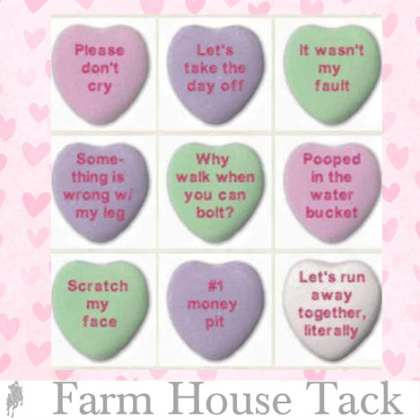 Equestrian candy hearts for valentines day