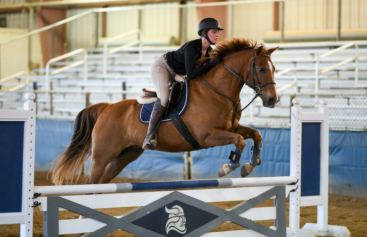 Rider at Berry College Gunby Equine Center