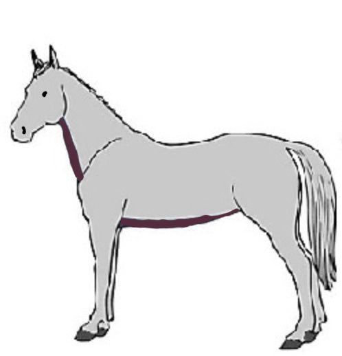 horse with strip clip
