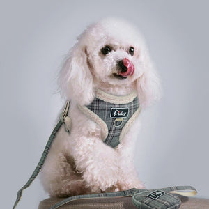 Soft Padded Dog Harness/Vest