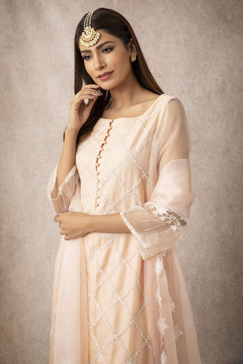 Sheer Kurta Set - ajieshoberoi