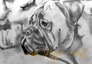 Pet Portrait Artist - Bullmastiff Drawing
