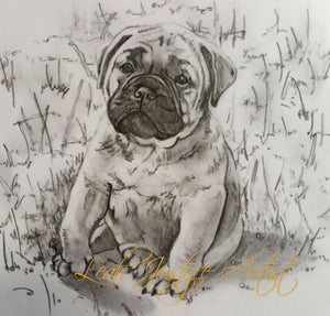 Pet Portrait Artist - Bullmastiff Puppy In Greylead