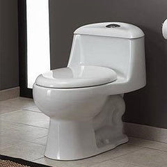Water Ridge One Piece Toilet Guide