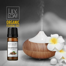 Load image into Gallery viewer, Cedarwood Atlas - Organic Essential Oil