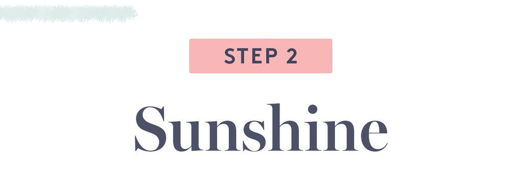 Step 2 - Sunshine