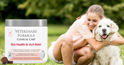 skin health and itch relief supplements to help prevent itchy hot spots during the summer
