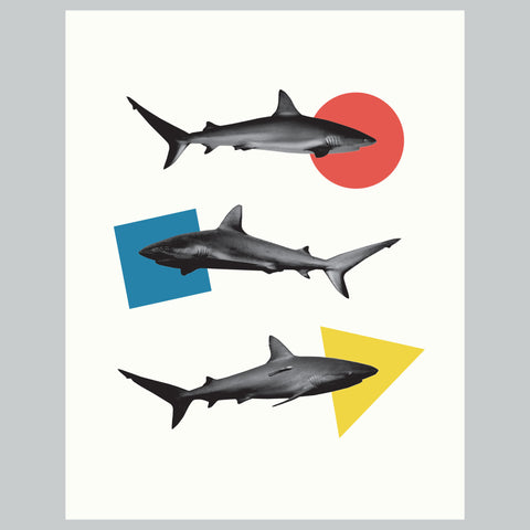 Three Sharks  | Modern Shark Collage Giclee Wall Art Print