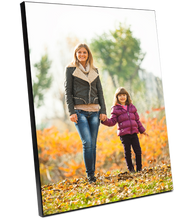 Load image into Gallery viewer, PG - Wall Mount Photo Panels