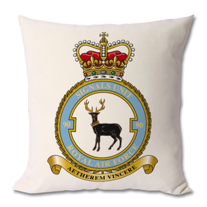 CUSHION - The Forces Shop