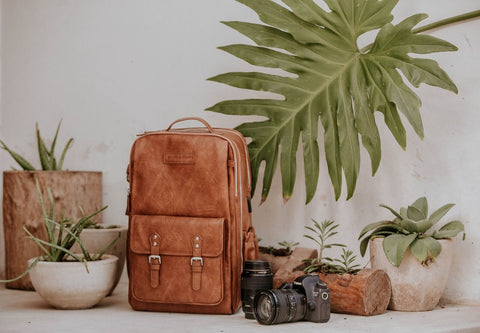 Best Most Stylish Camera Backpacks - House of Flynn Camera Backpack - Sunny 16