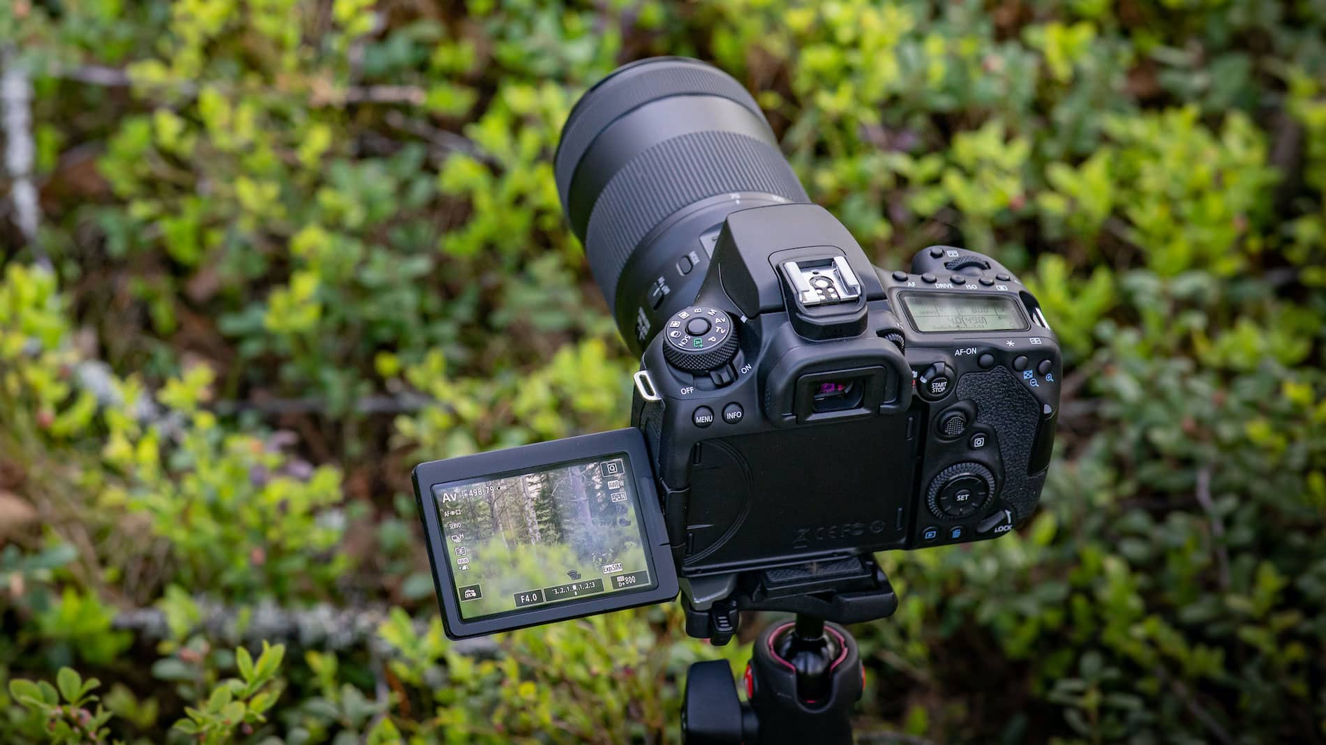 How to Start a Legal Photography Business with No Experience - Digital Photo Business