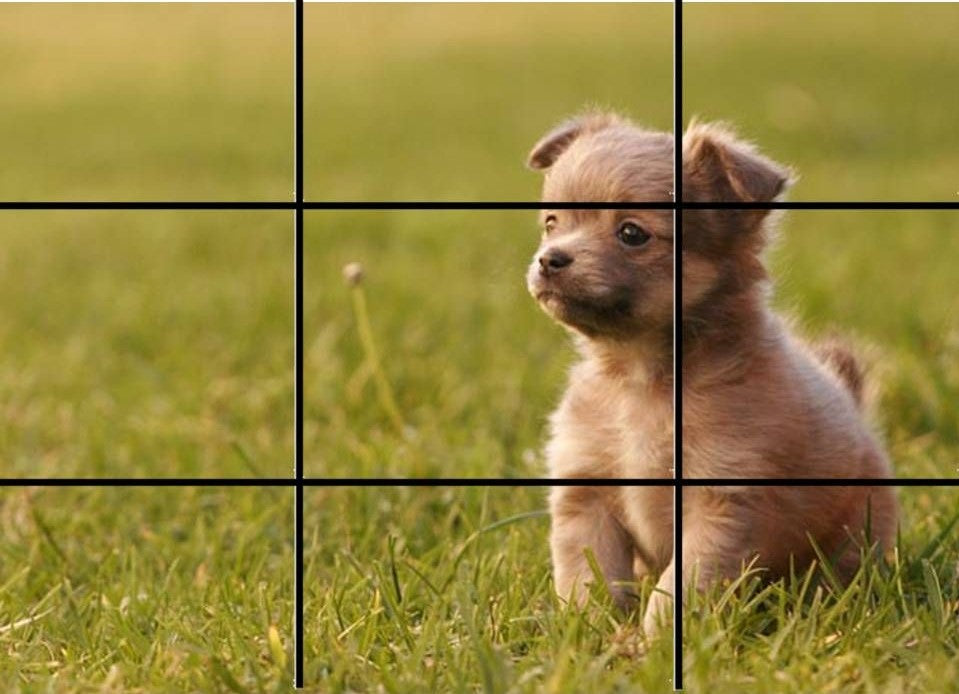 Rule of Thirds in Photography - Rule of Thirds Six Example - Sunny 16