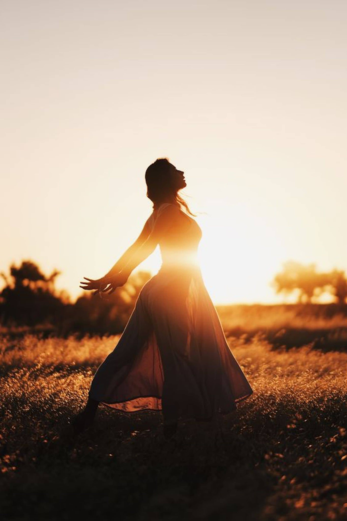 Silhouette Ambient Lighting Photography — Shutter Speed in Field — Sunny 16