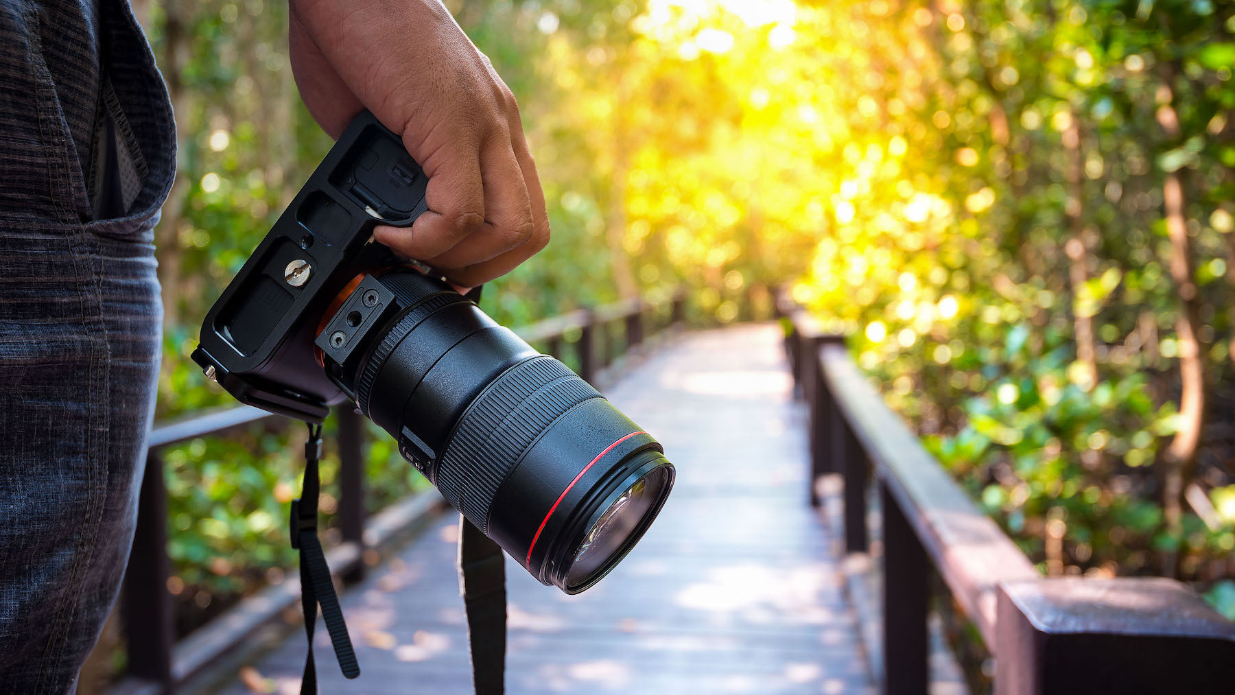 What is Photography - Best Camera for Photography - Sunny 16