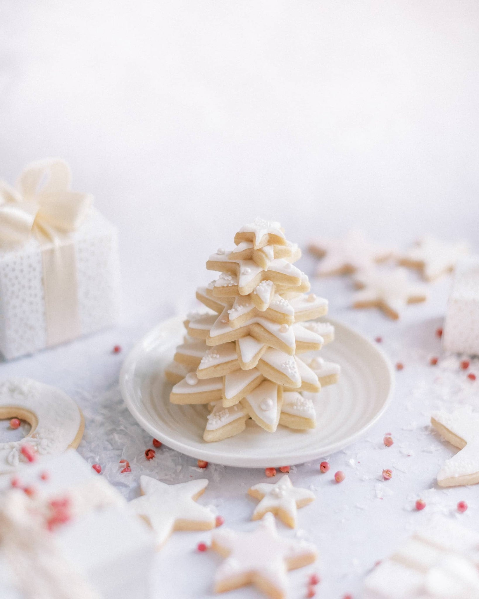 White Seamless Photo Backdrop for Food Photography — Sunny 16