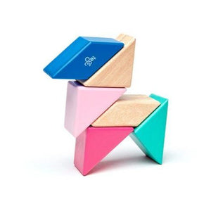 Pocket Pouch Prism Magnetic Wooden Blocks - 6 Pieces - Blossom