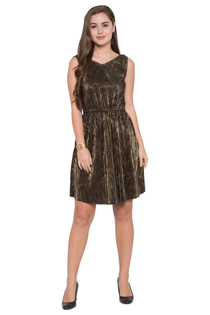 Plisse Pleat Fit-to-Flare Party Dress-1