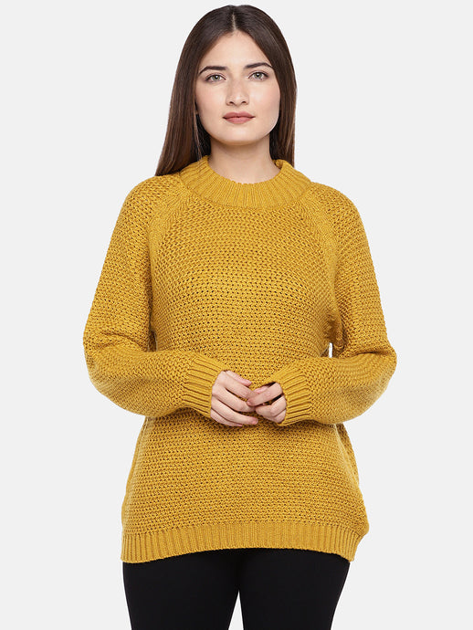 Women Mustard Self Design Sweater-1
