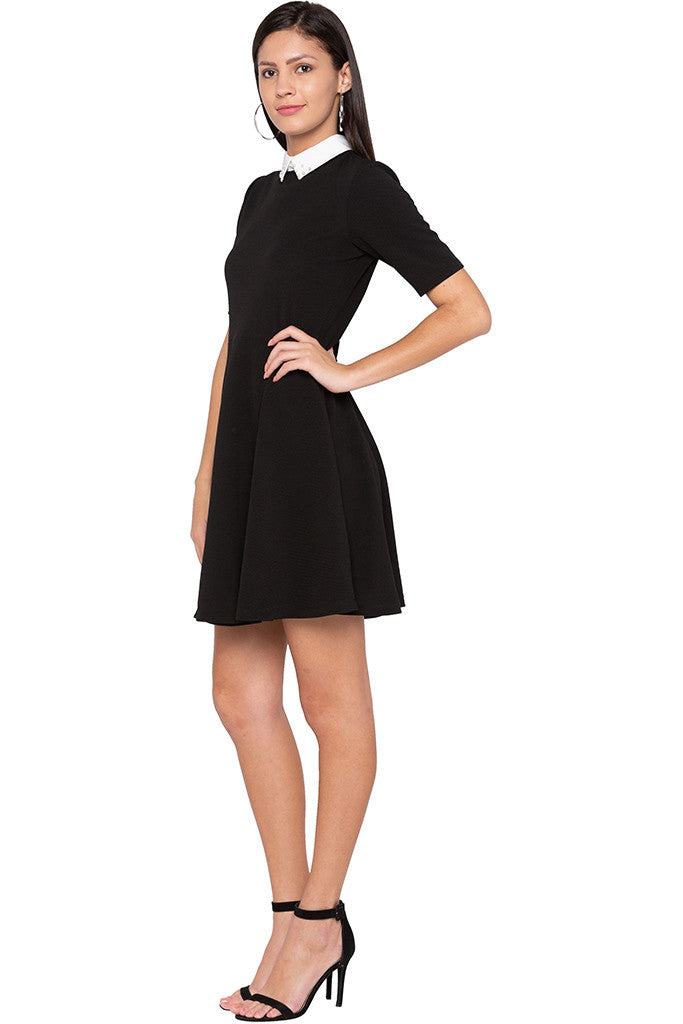 Peter Pan Collar Little Black Dress-4