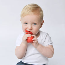 Load image into Gallery viewer, molar teether back teeth teething toy hygienically designed with wobble base in use