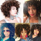 AISI HAIR Afro Kinky Curly Fully Wigs Shoulder Length Synthetic Wigs for African American Women natural Curly Heat Resistant fiber afro hair wigs (Mixed)