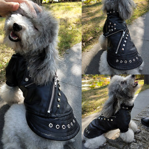 Cool Leather Dog Jacket Coat Warm Winter Dog Clothes French Bulldog Waterproof Pet Clothing Outfit for Small Medium Dogs Black