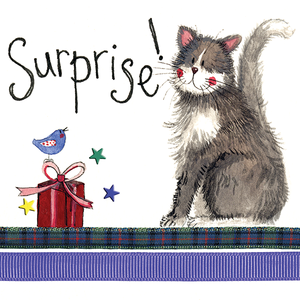 Cat Birthday Surprise Greeting Card