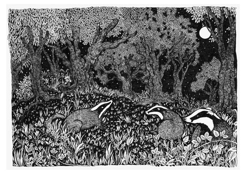 Badger Family A4 Print