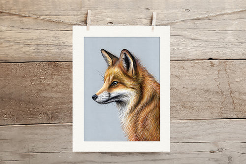 Fox Limited Edition Giclee Print