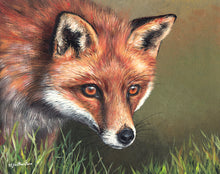 Load image into Gallery viewer, Red Fox