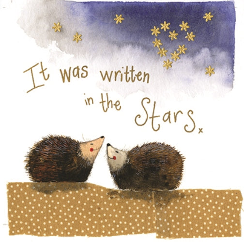 Stars Hedgehogs Greeting Card